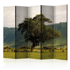 Artgeist 5-teiliges Paravent - In a crater of Ngoro ngoro II [Room Dividers]