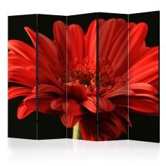 Artgeist 5-teiliges Paravent - Red gerbera flower II [Room Dividers]