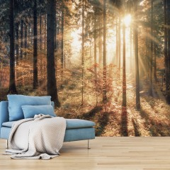 Basera® Selbstklebende Fototapete Waldmotiv c-B-0162-a-d, mit UV-Schutz