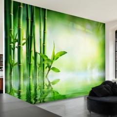 Selbstklebende Fototapete - Bamboo Grove