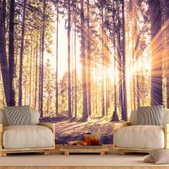 Basera® Selbstklebende Fototapete Waldmotiv c-B-0098-a-d, mit UV-Schutz
