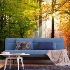 Basera® Selbstklebende Fototapete Waldmotiv c-B-0444-a-a, mit UV-Schutz
