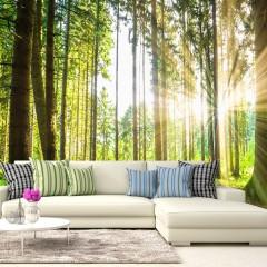 Basera® Selbstklebende Fototapete Waldmotiv c-B-0098-a-b, mit UV-Schutz