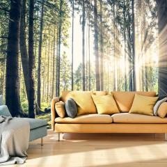 Basera® Selbstklebende Fototapete Waldmotiv c-B-0098-a-c, mit UV-Schutz