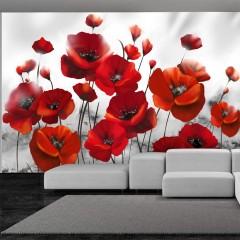 Selbstklebende Fototapete - Glowing poppies