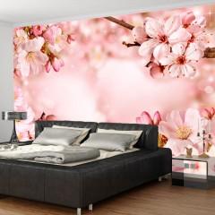 Basera® Selbstklebende Fototapete Kirschblütenmotiv b-A-0236-a-d, mit UV-Schutz