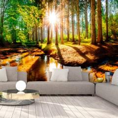 Basera® Selbstklebende Fototapete Waldmotiv c-B-0267-a-a, mit UV-Schutz