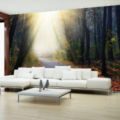 Basera® Selbstklebende Fototapete Waldmotiv c-A-0078-a-b, mit UV-Schutz