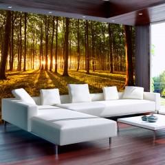 Basera® Selbstklebende Fototapete Waldmotiv c-B-0027-a-c, mit UV-Schutz