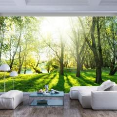Basera® Selbstklebende Fototapete Waldmotiv c-B-0336-a-a, mit UV-Schutz