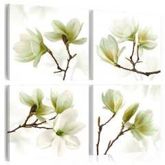 Artgeist Wandbild - Bewunderung der Magnolie