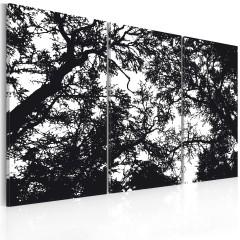 Artgeist Wandbild - Dichter Wald