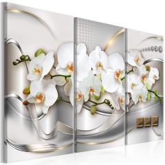 Artgeist Wandbild - Blooming Orchids I