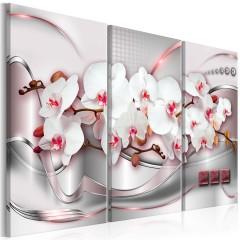 Artgeist Wandbild - Wonderful Orchids I