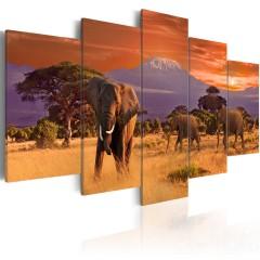 Artgeist Wandbild - Africa: Elephants