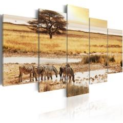 Artgeist Wandbild - Zebras in der Savanne