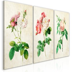 Artgeist Wandbild - Floral Trio (Collection)