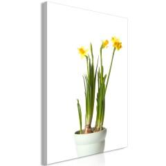 Artgeist Wandbild - Narcissus (1 Part) Vertical