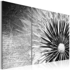 Artgeist Wandbild - Pusteblume (schwarz-weiß)