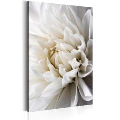 Artgeist Wandbild - White Dahlia