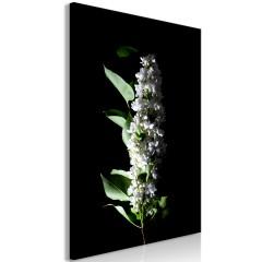 Artgeist Wandbild - White Lilacs (1 Part) Vertical