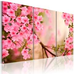 Artgeist Wandbild - Winzige Kirchblüten