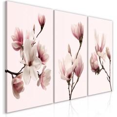 Artgeist Wandbild - Spring Magnolias (3 Parts)