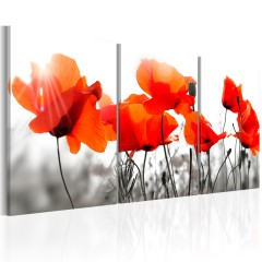 Artgeist Wandbild - Charming Poppies