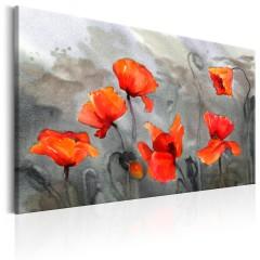 Artgeist Wandbild - Poppies (Watercolour)