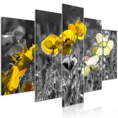 Artgeist Wandbild - Yellow Poppies (5 Parts) Wide