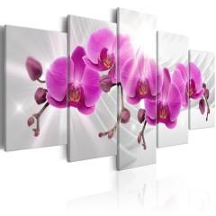 Artgeist Wandbild - Abstract Garden: Pink Orchids