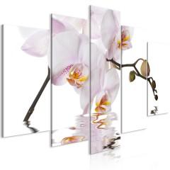Artgeist Wandbild - Delightful Orchid (5 Parts) Wide