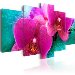 Artgeist Wandbild - Exotic orchids