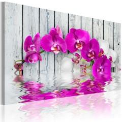 Artgeist Wandbild - Harmonie: Orchidee