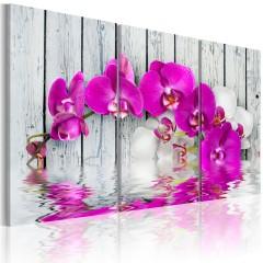 Artgeist Wandbild - Harmonie: Orchidee - Triptychon