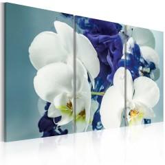 Artgeist Wandbild - Launische Orchideen