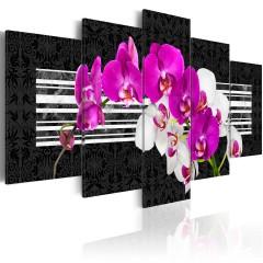 Artgeist Wandbild - Modest orchids