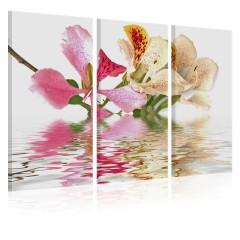 Artgeist Wandbild - Orchideen in kleine Punkte
