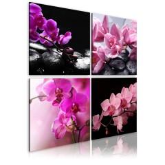 Artgeist Wandbild - Orchideen schöner als je zuvor