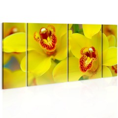 Artgeist Wandbild - Orchids - intensity of yellow color