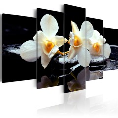 Artgeist Wandbild - Orchids with orange accent