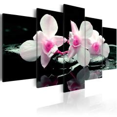 Artgeist Wandbild - Rest of orchids