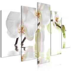 Artgeist Wandbild - Wonderful Orchid (5 Parts) Wide