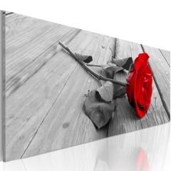 Artgeist Wandbild - Carmine rose