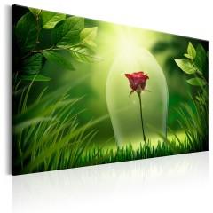 Artgeist Wandbild - Magical Rose