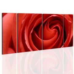 Artgeist Wandbild - Passionate rose