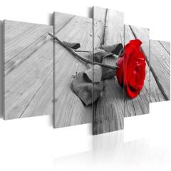Artgeist Wandbild - Rose on Wood (5 Parts) Wide Red