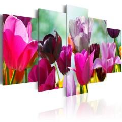 Artgeist Wandbild - Pink & Co.