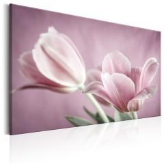 Artgeist Wandbild - Romantic Tulips