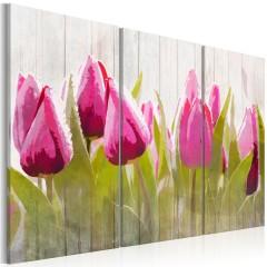 Artgeist Wandbild - Spring bouquet of tulips